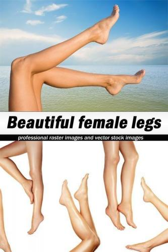Beautiful female legs