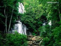 alltheportal-net_anna-ruby-falls-chattahoochee-national-forest.jpg