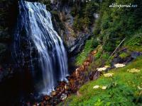 alltheportal-net_narada-falls-mount-rainier-national-forest-was.jpg