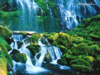 alltheportal-net_proxy-falls-willamette-national.jpg