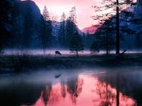 alltheportal-net_mystical-waters-yosemite-national-park-califor.jpg